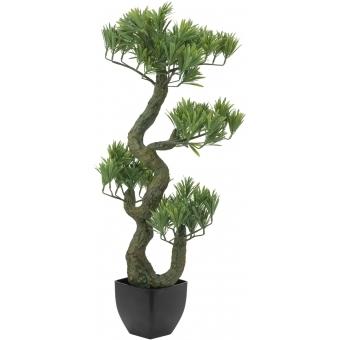 EUROPALMS Pine Bonsai, 70cm #2