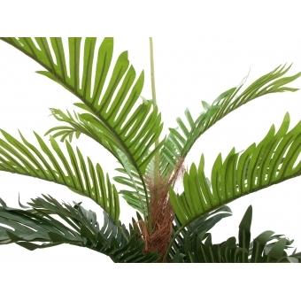 EUROPALMS Kentia palm tree, artificial plant, 180cm #4