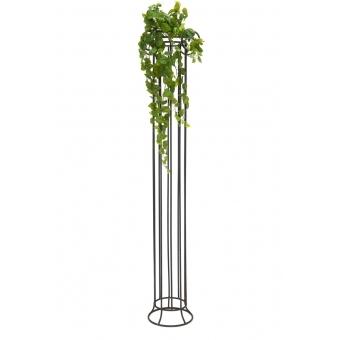 EUROPALMS Pothos Bush Tendril Premium, 100cm #3