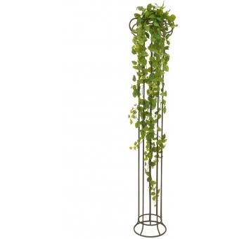 EUROPALMS Pothos Bush Tendril Premium, 170cm #4