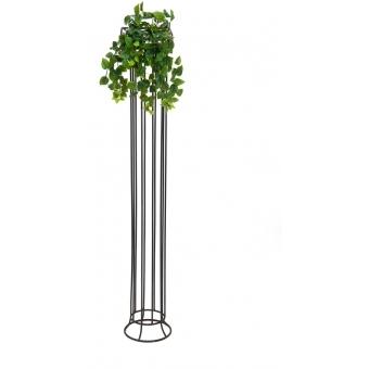 EUROPALMS Philodendron Bush, Premium, 60cm #3