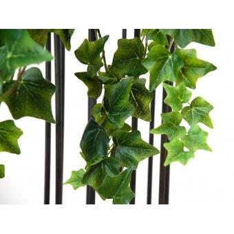 EUROPALMS Ivy Bush,  Premium, 50cm #2