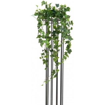EUROPALMS Ivy Bush, Premium, 100cm