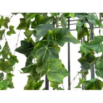 EUROPALMS Ivy Bush, Premium, 100cm #2