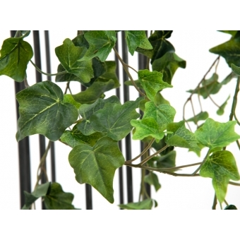 EUROPALMS Ivy Bush, Premium, 100cm #3
