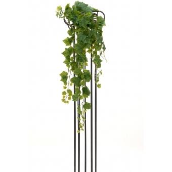 EUROPALMS Grape Bush, Premium, 100cm