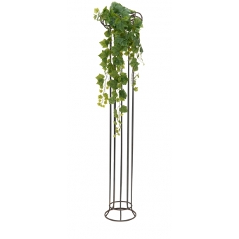 EUROPALMS Grape Bush, Premium, 100cm #3