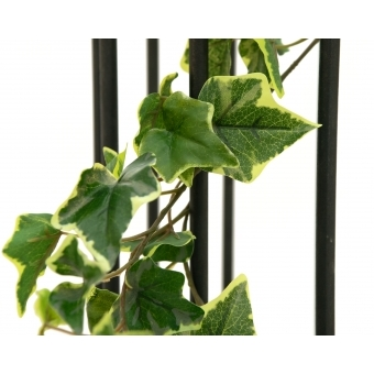 EUROPALMS Holland Ivy Garland, Premium, 180cm