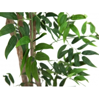 EUROPALMS Ficus longifolia, artificial plant, 165cm #2