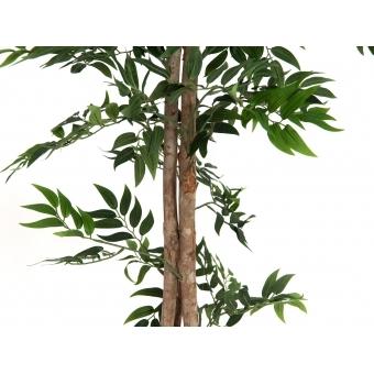 EUROPALMS Ficus longifolia, artificial plant, 165cm #4