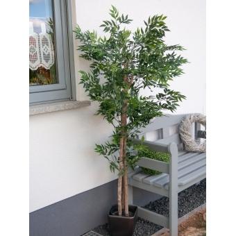 EUROPALMS Ficus longifolia, artificial plant, 165cm #5