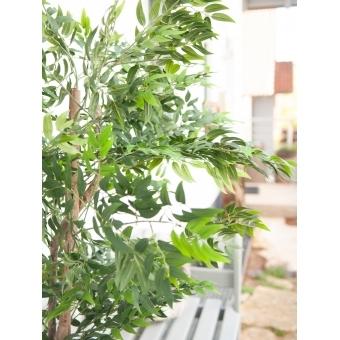 EUROPALMS Ficus longifolia, artificial plant, 165cm #7