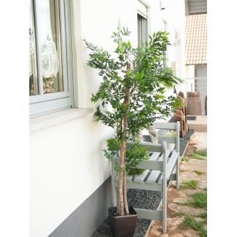 EUROPALMS Ficus longifolia, artificial plant, 165cm #8