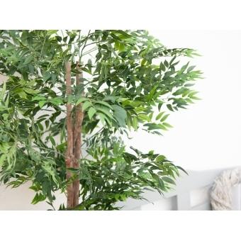 EUROPALMS Ficus longifolia, artificial plant, 165cm #10