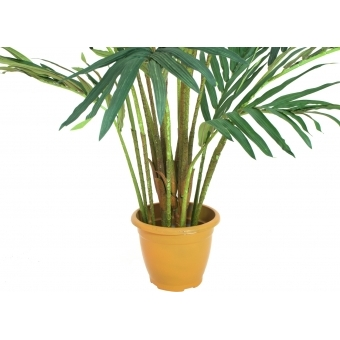 EUROPALMS Canary date palm, artificial plant, 240cm #4