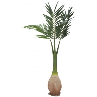 EUROPALMS Phoenix palm, artificial plant, 240cm