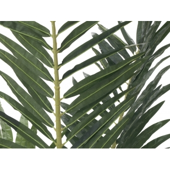 EUROPALMS Phoenix palm, artificial plant, 240cm #2