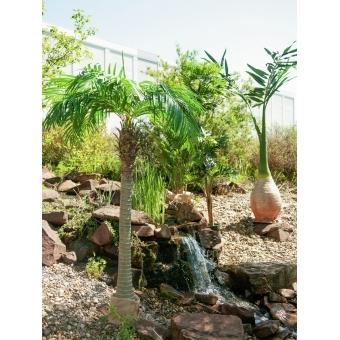 EUROPALMS Phoenix palm, artificial plant, 240cm #8