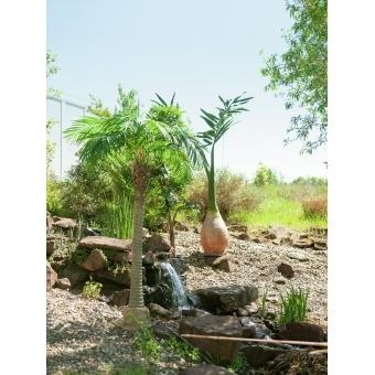 EUROPALMS Phoenix palm, artificial plant, 240cm #10