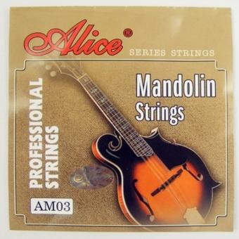 Corzi mandolina Alice AM03 / AM04