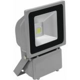 EUROLITE LED IP FL-80 COB 3000K 120°