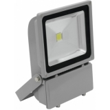 EUROLITE LED IP FL-100 COB 3000K 120°