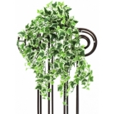 EUROPALMS Ivy tendril, green-white, 50cm