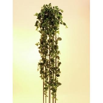 EUROPALMS Classical Potho Tendril, 160cm #2