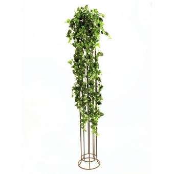 EUROPALMS Classical Potho Tendril, 160cm #3