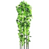 EUROPALMS Classical philo tendril, 160cm
