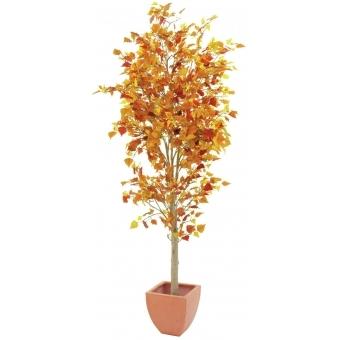 EUROPALMS Autumn tree, 180cm