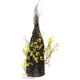 EUROPALMS Forsythia bush, 60cm #3