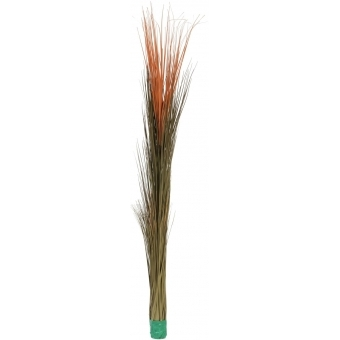 EUROPALMS Reed grass, light brown, 127cm