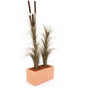 EUROPALMS Reed grass, khaki, 127cm #3