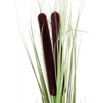 EUROPALMS Reed grass w/ cattails,light green,152cm #2