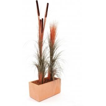 EUROPALMS Reed grass w/ cattails, light-brown,152cm #3