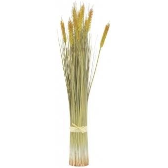 EUROPALMS Wheat bunch, 60cm