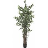 EUROPALMS Ficus tree deluxe, 210cm