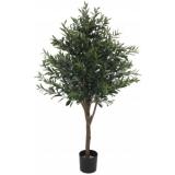 EUROPALMS Olive tree, 130cm