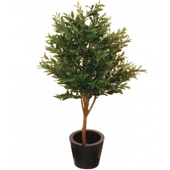 EUROPALMS Olive Tree, 160cm