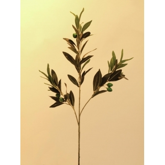 EUROPALMS Olive branch with fruits 68cm 6x #2