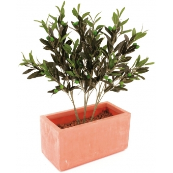 EUROPALMS Olive branch with fruits 68cm 6x #3