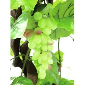 EUROPALMS Vine with grapes, 160cm #3