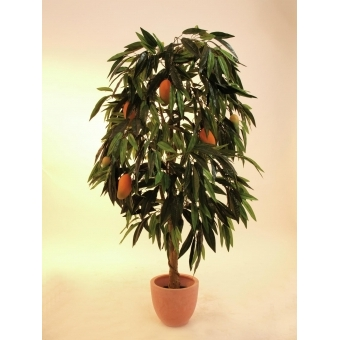EUROPALMS Mango tree with fruits, 165cm #5