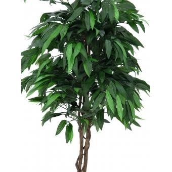 EUROPALMS Jungle tree Mango, 180cm #2