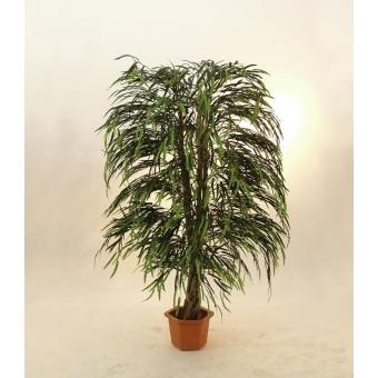 EUROPALMS Willow tree multi leaf, 215cm #2