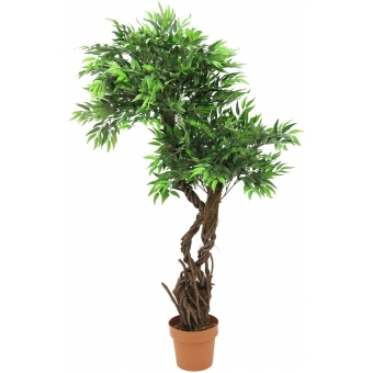 EUROPALMS Willow, 145cm #4