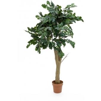 EUROPALMS Oak tree, 160cm