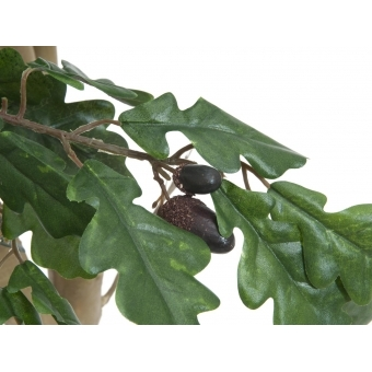 EUROPALMS Oak tree, 160cm #2