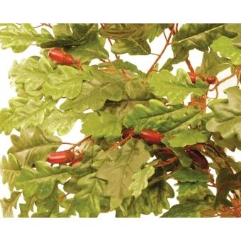 EUROPALMS Oak tree, 160cm #4